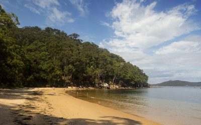 Things to do in Terrigal