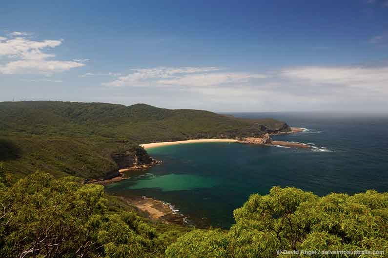 Image of Maitland Bay Bouddi National Park
