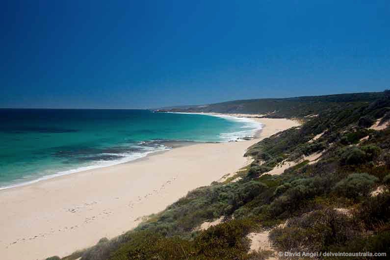 Image of Injidup Beach on the Margaret River coast, Western Australia