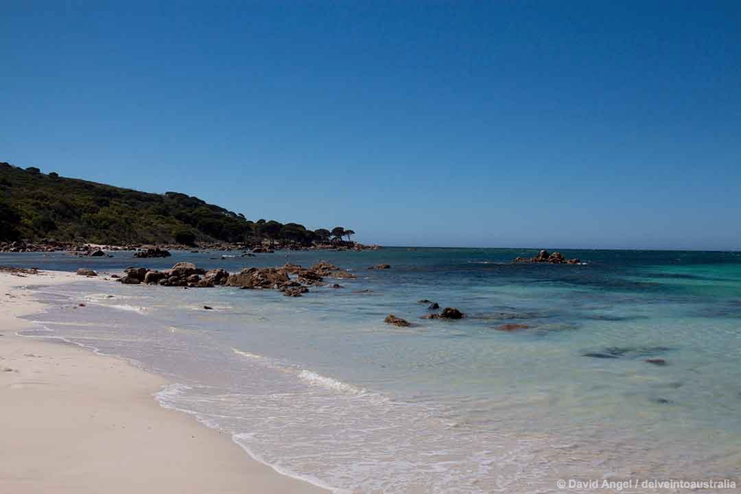 Image of Bunker Bay beach Western Australia