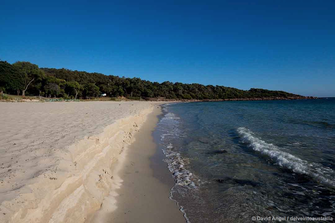 Image of Meelup Bay Beach, Western Australia