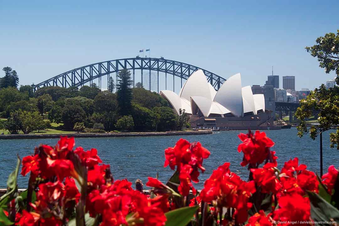 Image of Sydney Opera House from Royal Botanic Garden